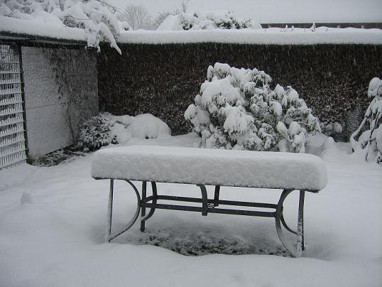 vinter1612200901
