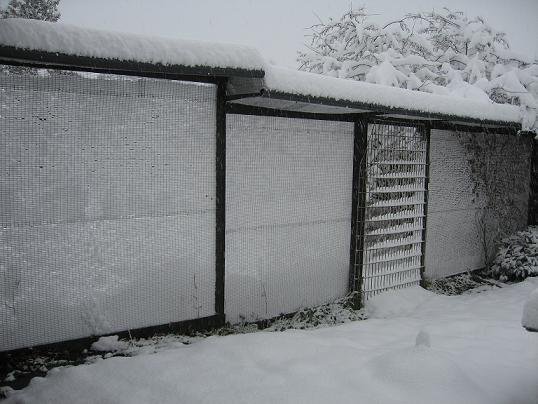 vinter1612200902
