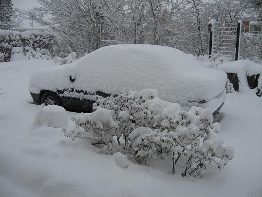 vinter1612200904